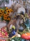 Sonneblumen und viele Früchte am Erntedankaltar